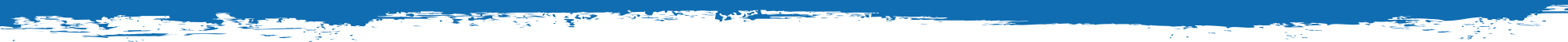Blue Banner4