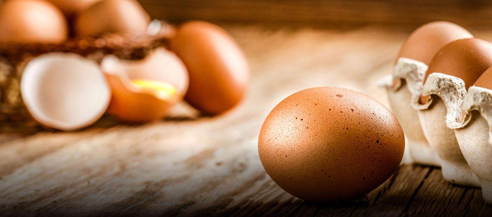 Riverview Eggs Main Slider 1