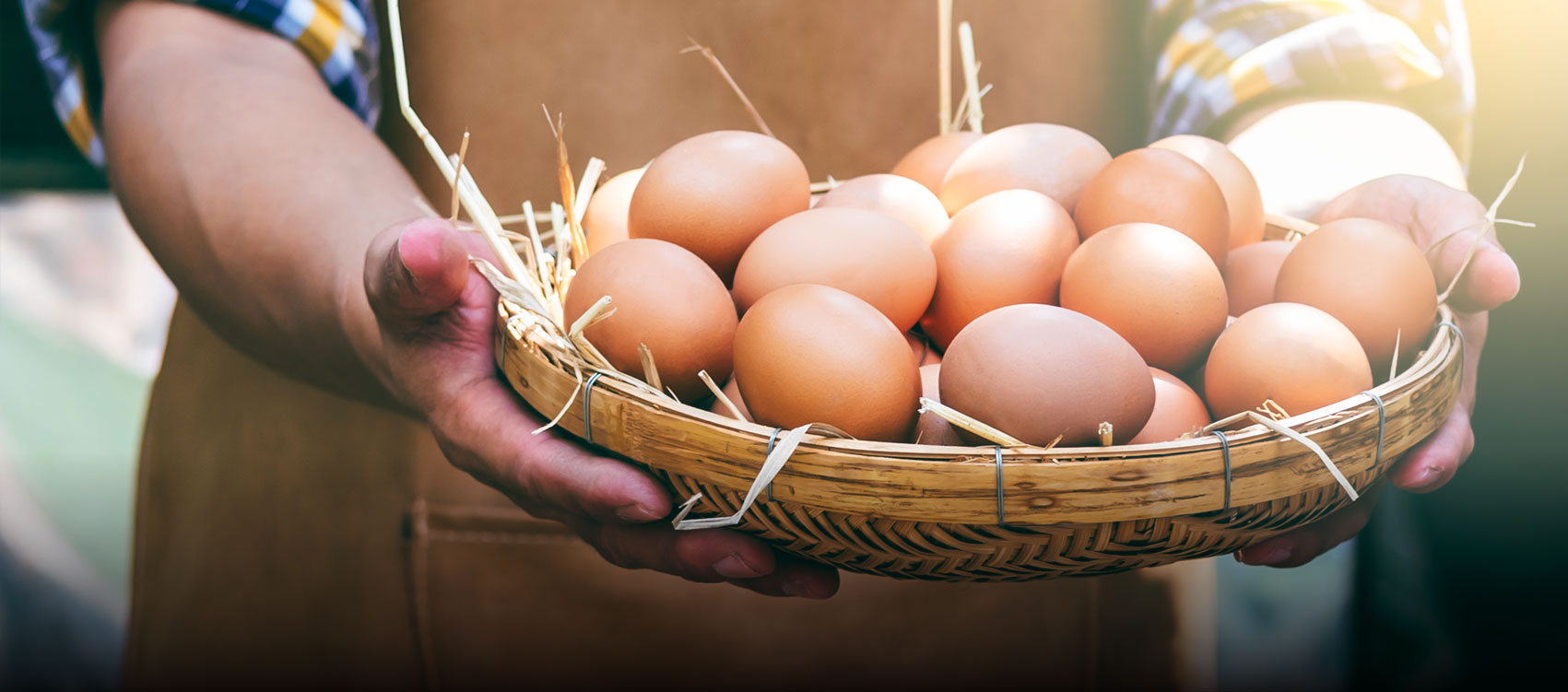 Riverview Eggs Sustainability Slider